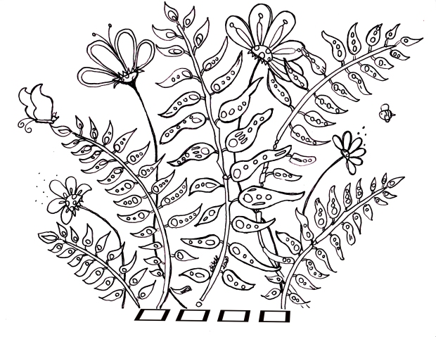 Flowers and Ferns coloringpage